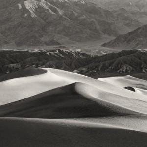 Mirrored Dunes, Lee Backer