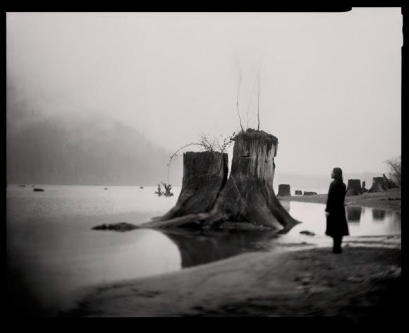 "Rattlesnake Lake, 16x20"" plantinotype scanned from 4x5"" negative image, Tomiko Jones, 2014"