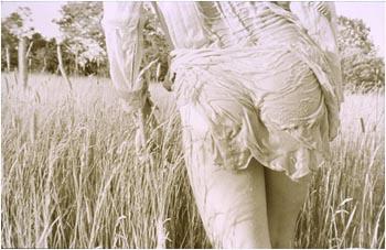 In Tall Grass, 1980, Elizabeth Opalenik